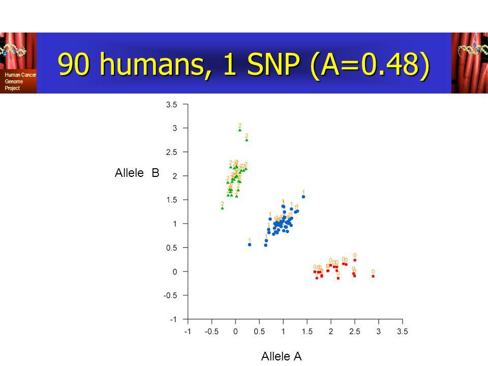 90 humans, 1 SNP (A=0.48) Allele B Allele A