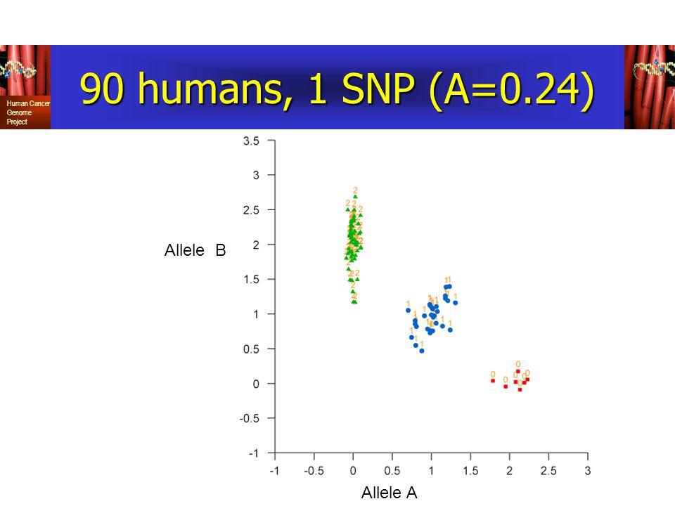 90 humans, 1 SNP (A=0.24) Allele B Allele A
