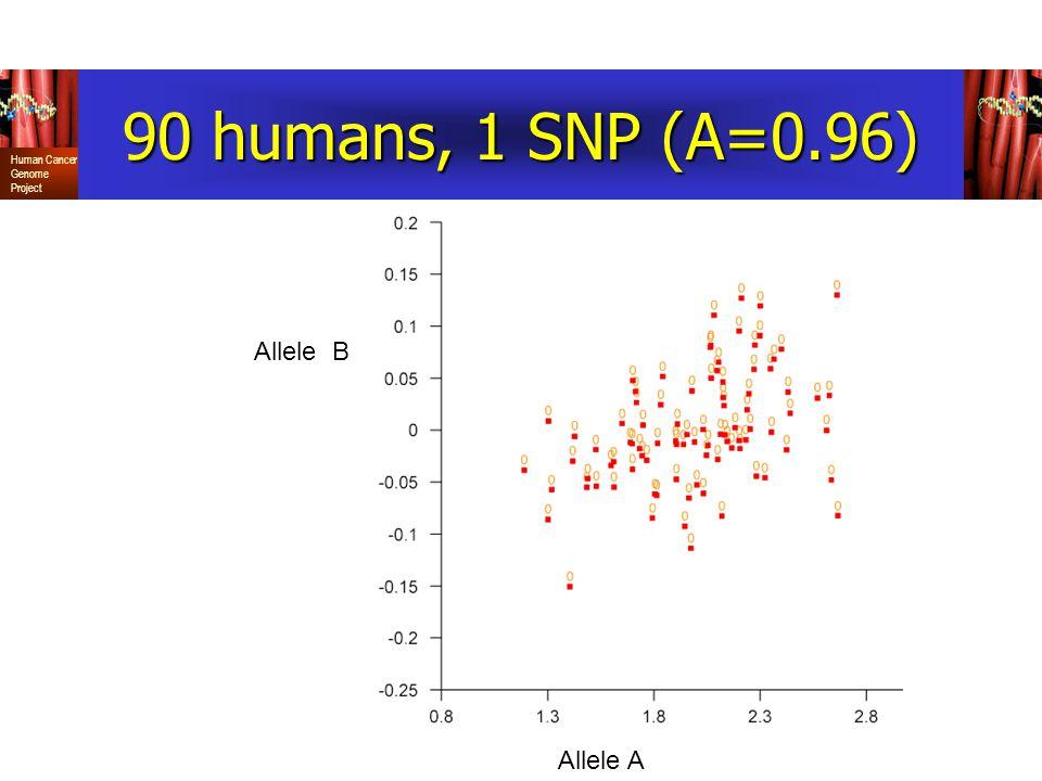 90 humans, 1 SNP (A=0.96) Allele B Allele A