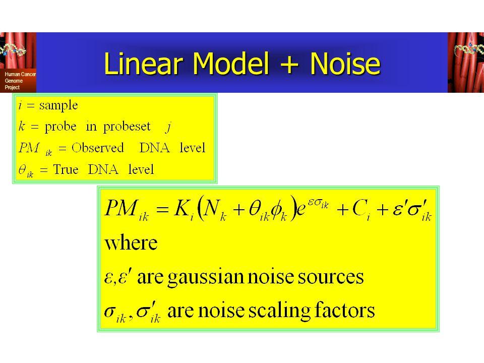 Linear Model + Noise