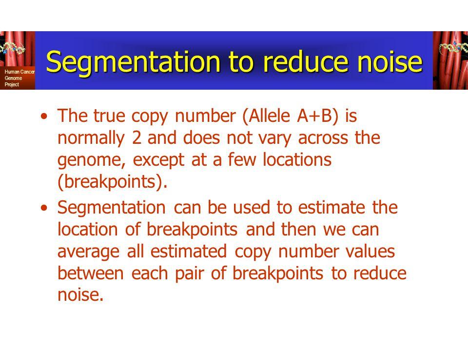 Segmentation to reduce noise