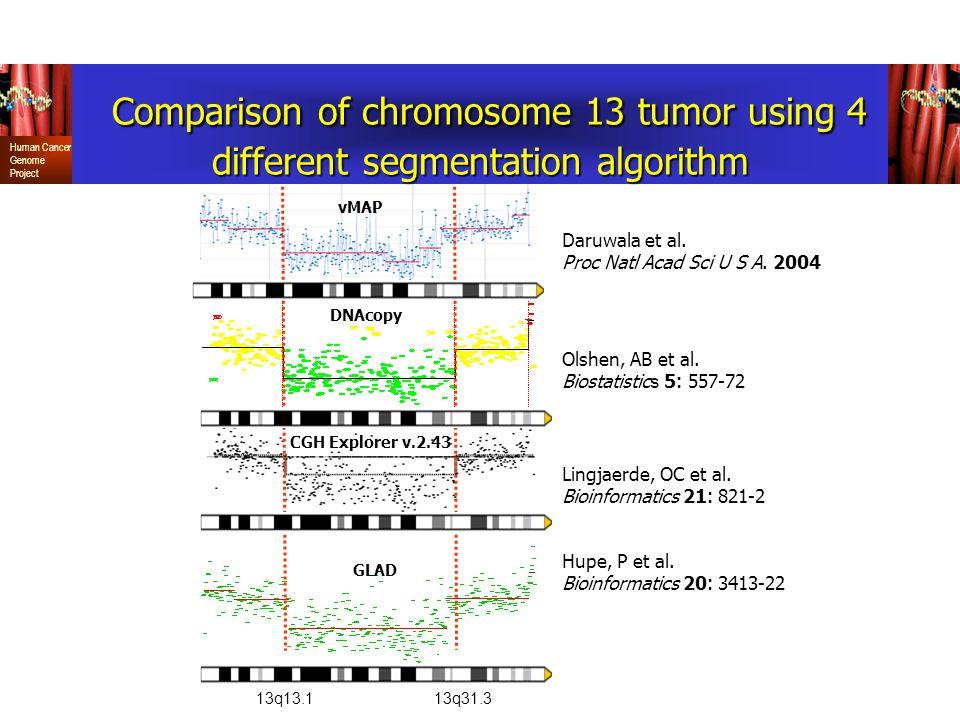Comparison of chromosome 13 tumor using 4 different segmentation algorithm