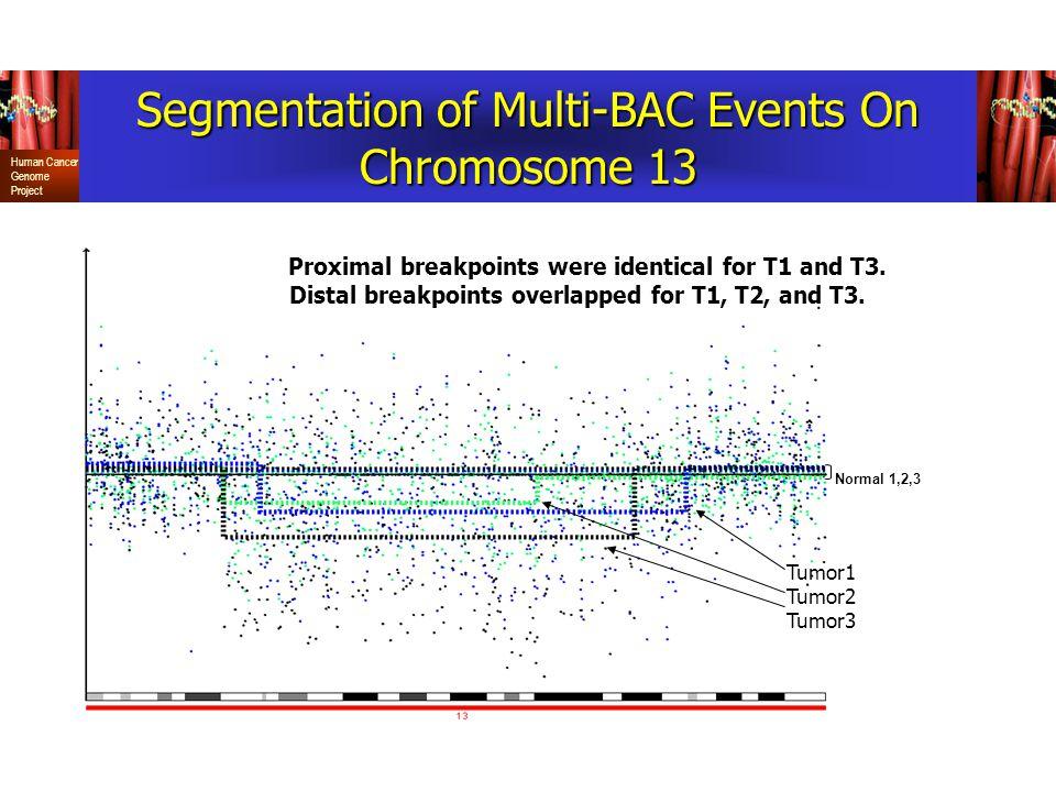 Segmentation of Multi-BAC Events On Chromosome 13