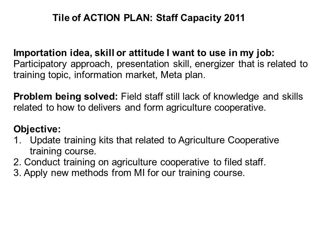 Tile of ACTION PLAN: Staff Capacity 2011