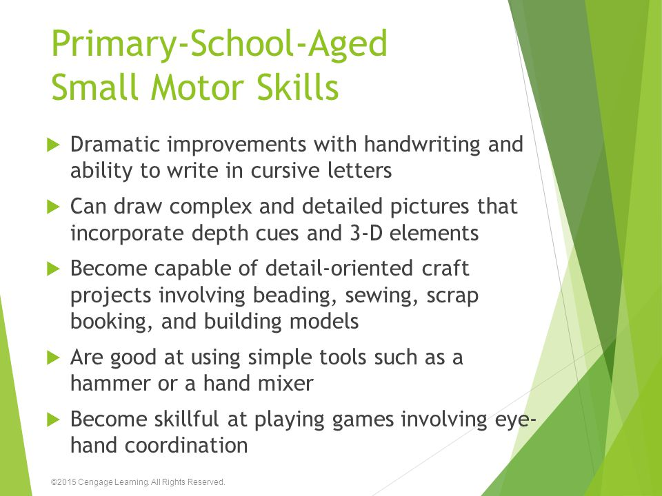 Primary-School-Aged Small Motor Skills