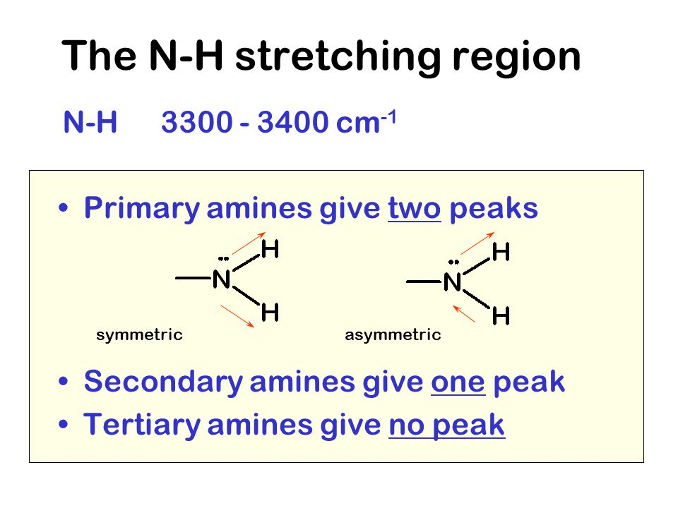 The N-H stretching region