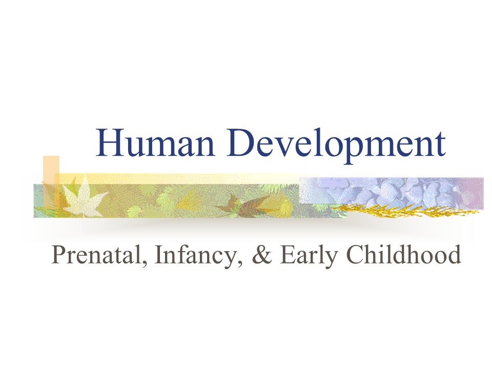 Prenatal, Infancy, & Early Childhood
