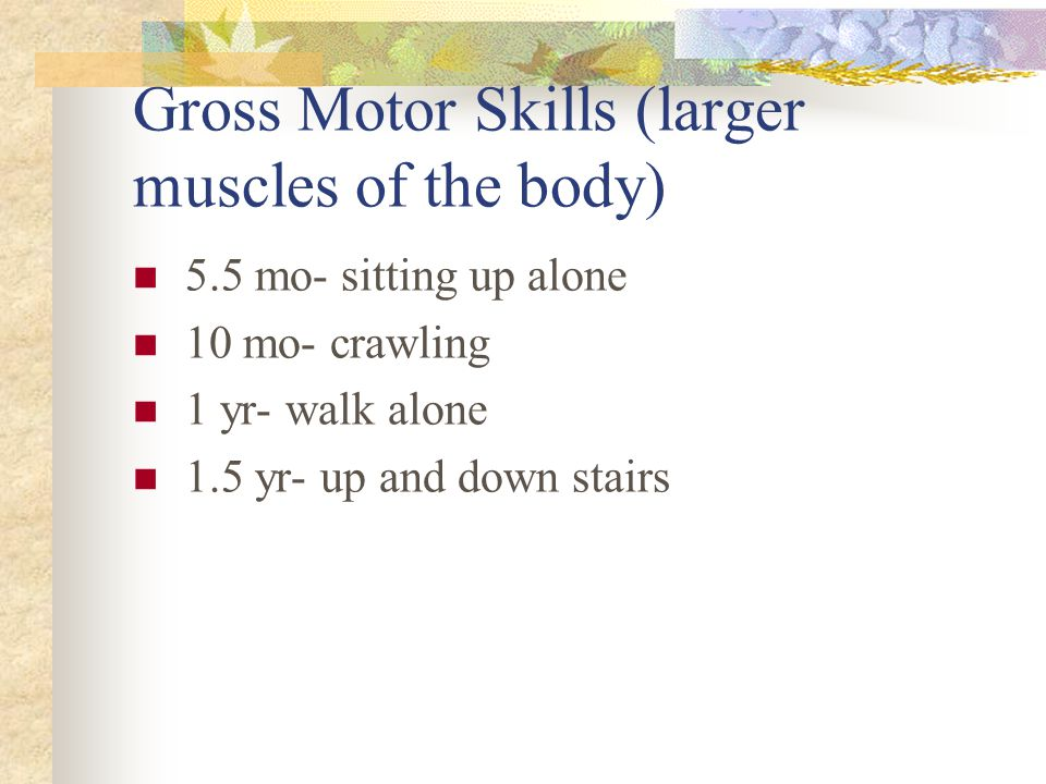 Gross Motor Skills (larger muscles of the body)