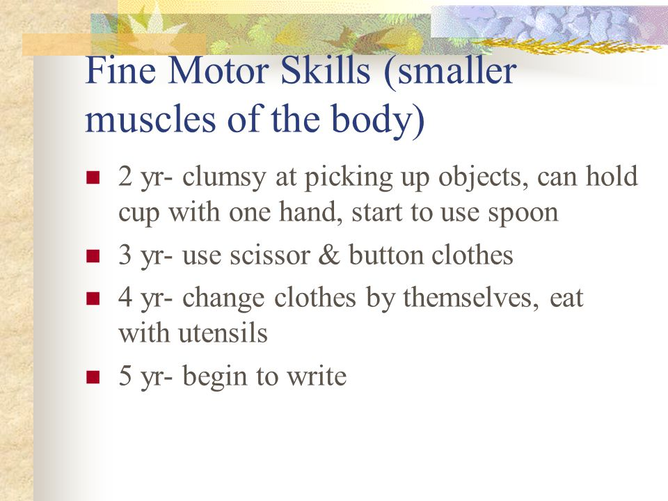 Fine Motor Skills (smaller muscles of the body)