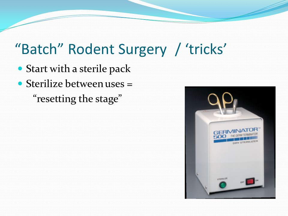 Batch Rodent Surgery / 'tricks'