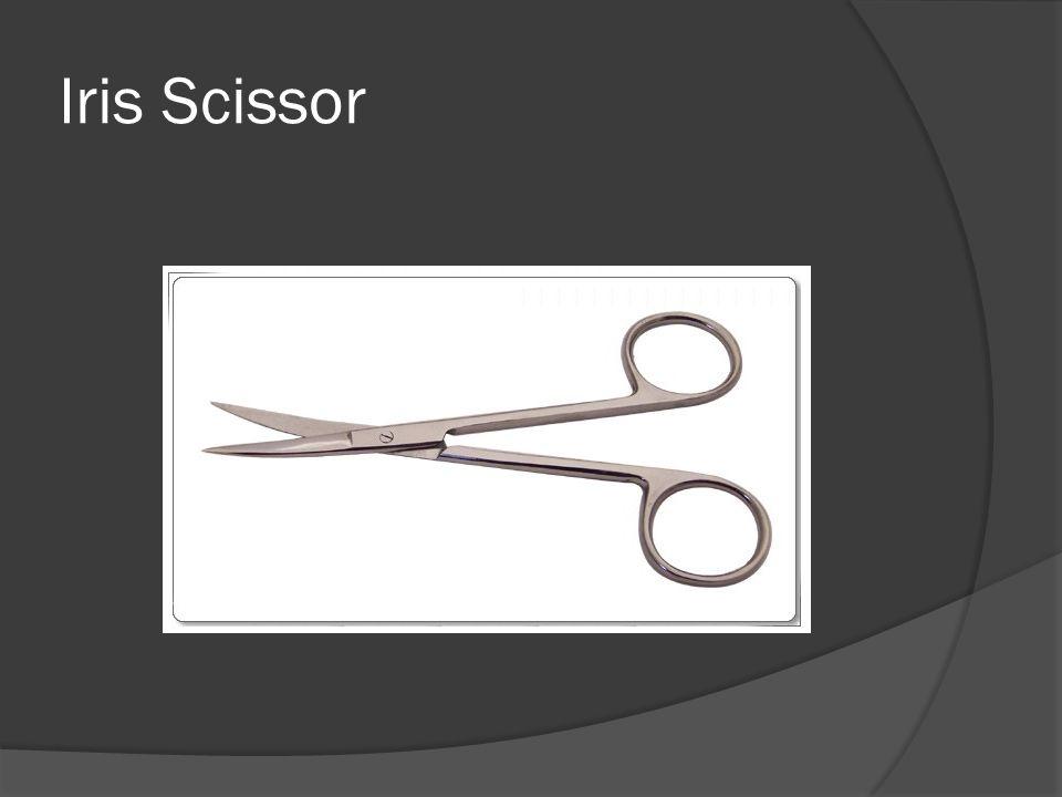 Iris Scissor