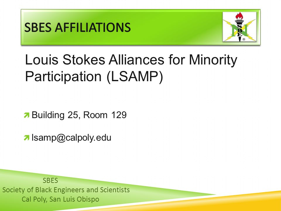 Louis Stokes Alliances for Minority Participation (LSAMP)