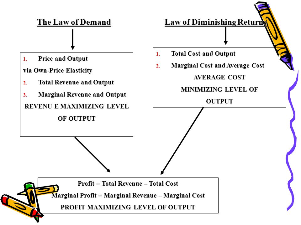 The Law of Demand Law of Diminishing Returns