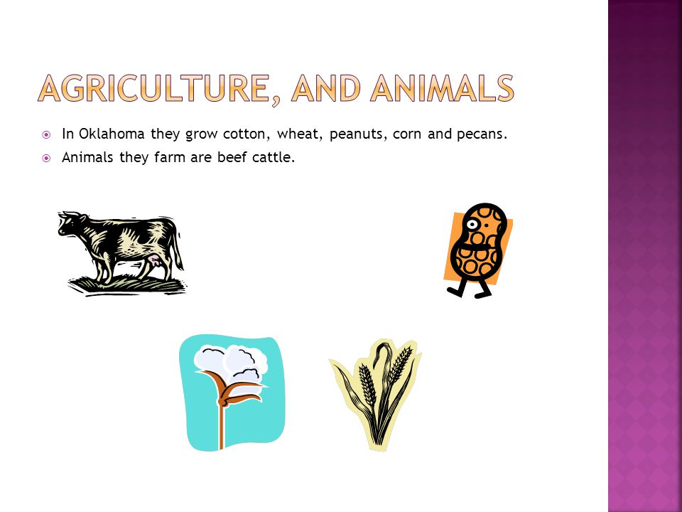 Agriculture, and Animals