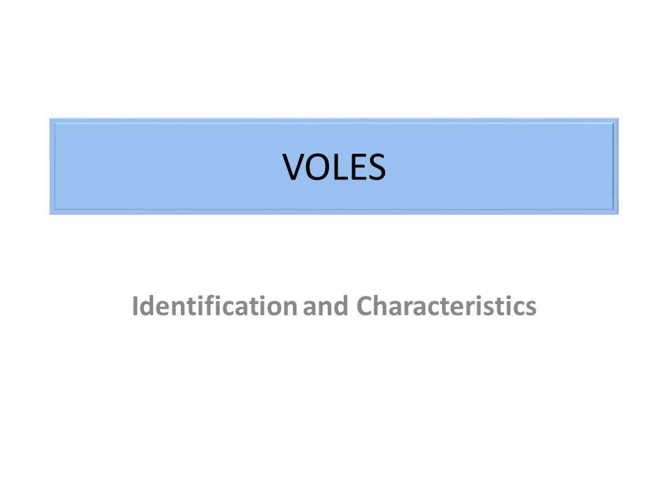 Identification and Characteristics