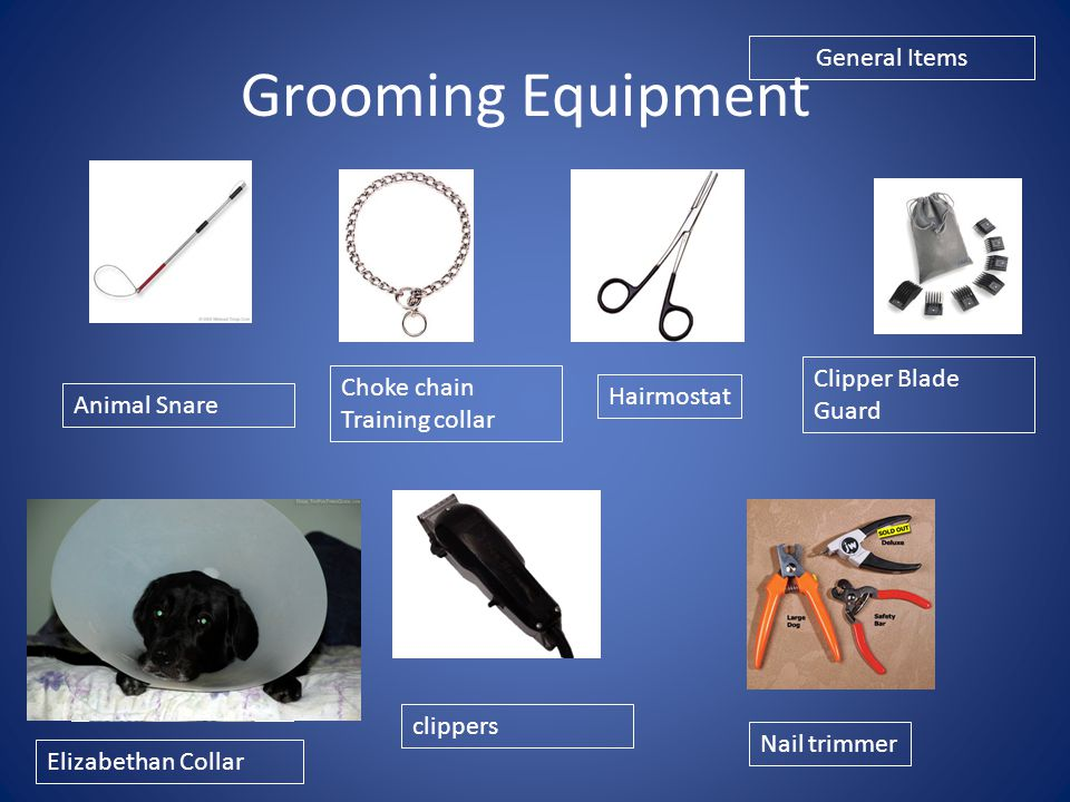 Grooming Equipment General Items Clipper Blade Guard Choke chain