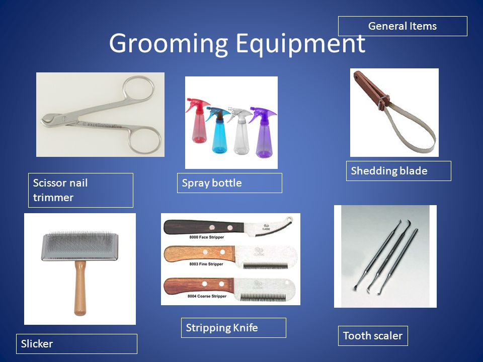 Grooming Equipment General Items Shedding blade Scissor nail trimmer