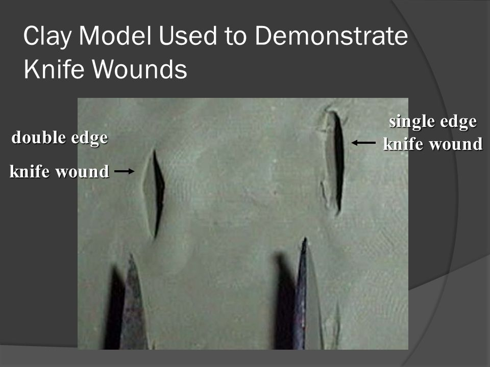 Clay Model Used to Demonstrate Knife Wounds