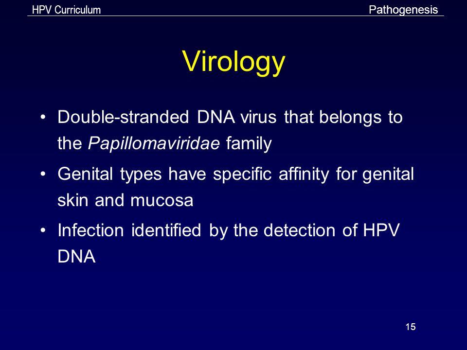 Pathogenesis Virology. Double-stranded DNA virus that belongs to the Papillomaviridae family.