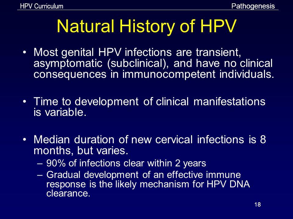 Pathogenesis Natural History of HPV.