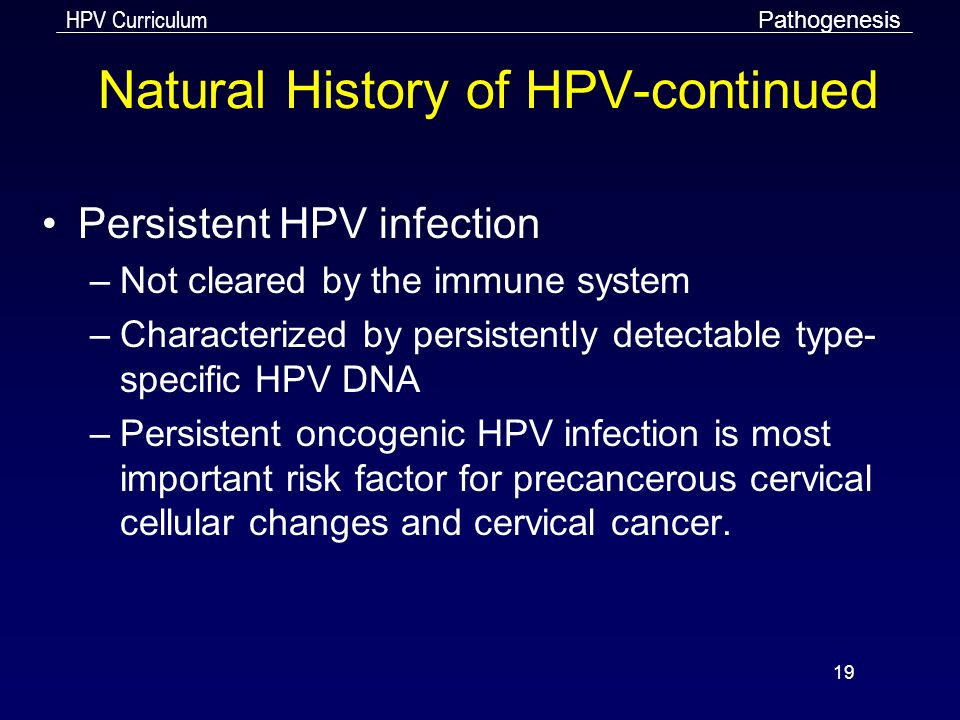 Natural History of HPV-continued
