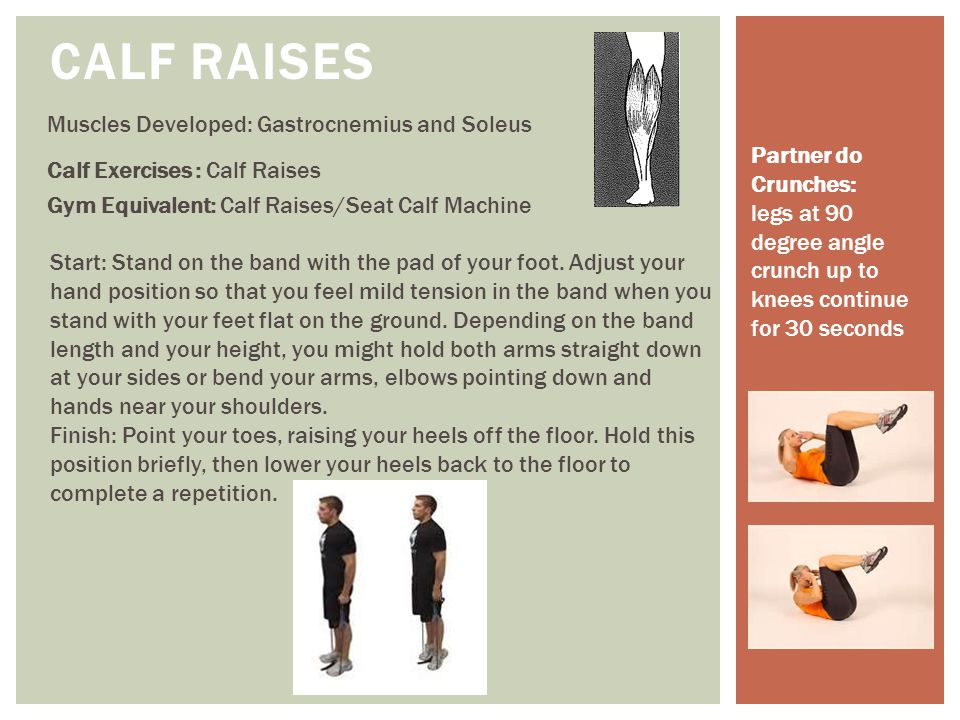 Calf Raises Muscles Developed: Gastrocnemius and Soleus