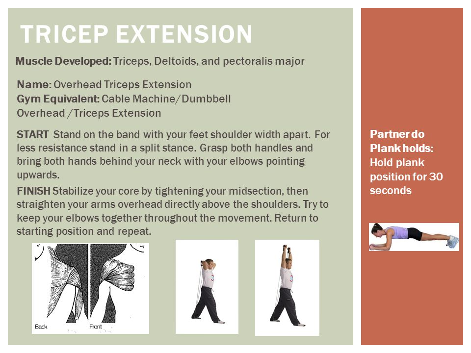 TRICEP EXTENSION Muscle Developed: Triceps, Deltoids, and pectoralis major. Name: Overhead Triceps Extension.
