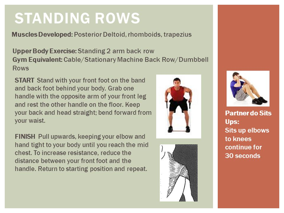 STANDING ROWS Muscles Developed: Posterior Deltoid, rhomboids, trapezius. Upper Body Exercise: Standing 2 arm back row.