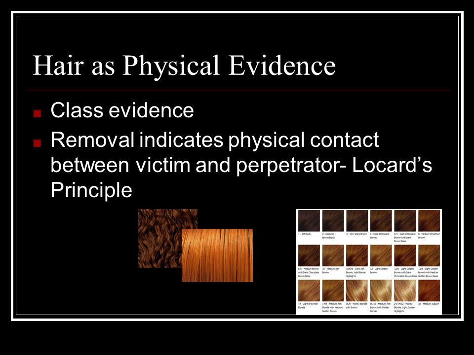 Hair as Physical Evidence
