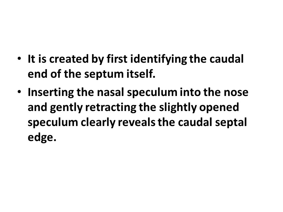 It is created by first identifying the caudal end of the septum itself.