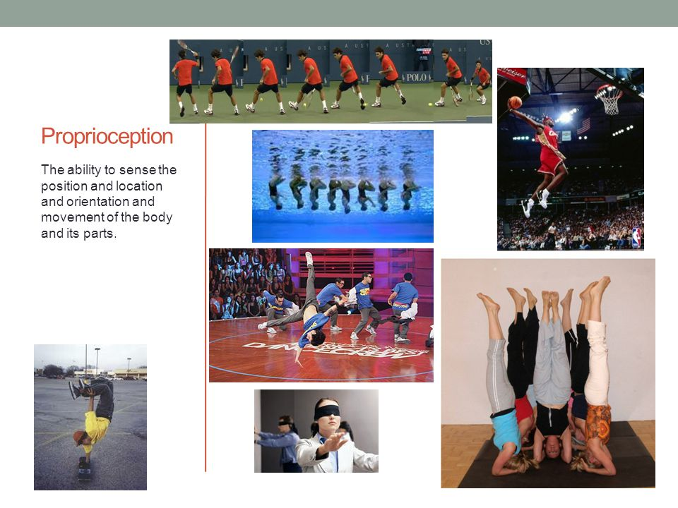 Proprioception The ability to sense the position and location and orientation and movement of the body and its parts.