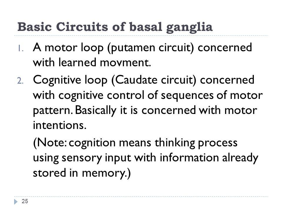 Basic Circuits of basal ganglia