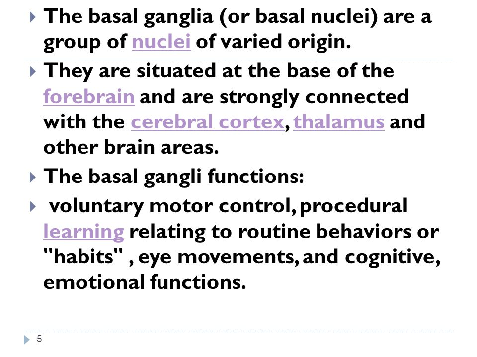 The basal ganglia (or basal nuclei) are a group of nuclei of varied origin.