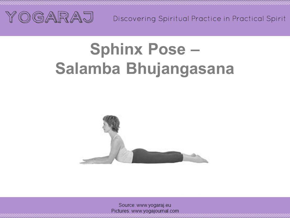 Sphinx Pose – Salamba Bhujangasana