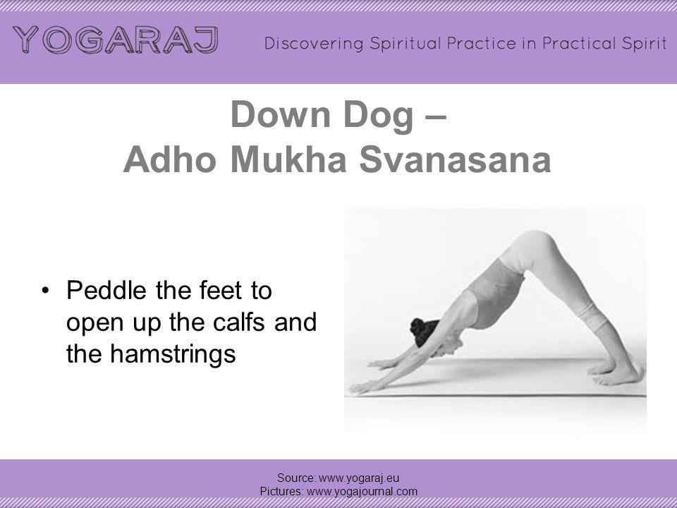 Down Dog – Adho Mukha Svanasana