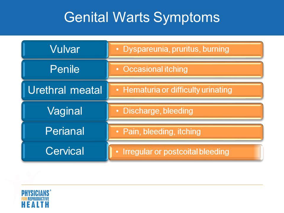Genital Warts Symptoms