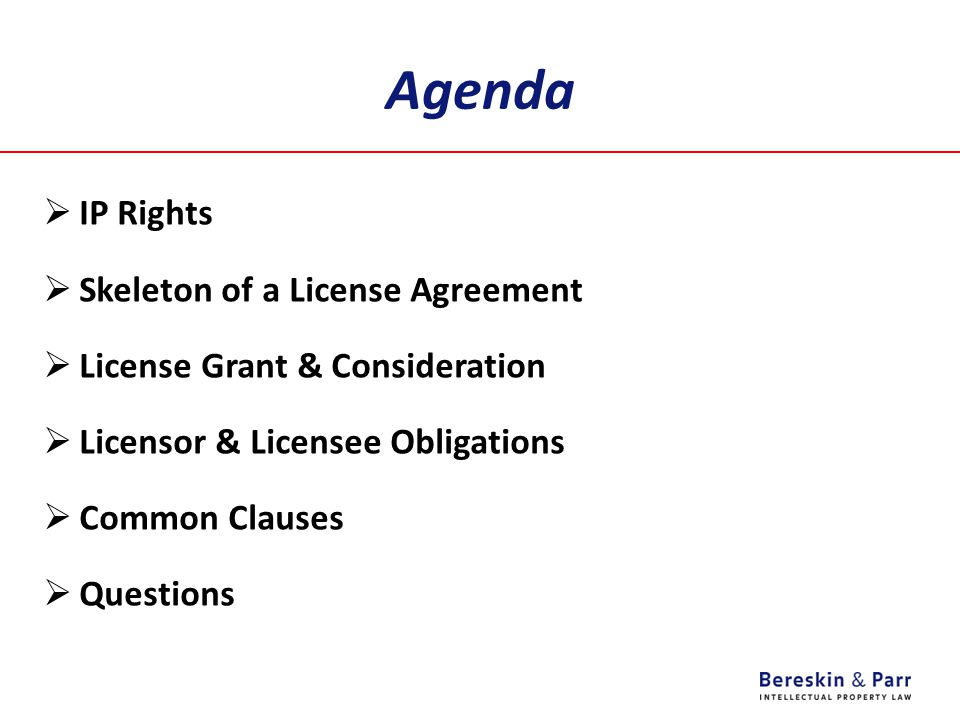 Agenda IP Rights Skeleton of a License Agreement