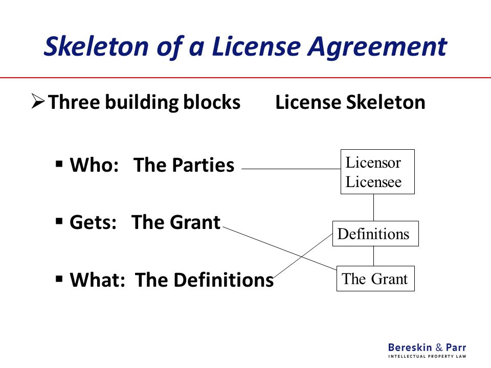 Skeleton of a License Agreement