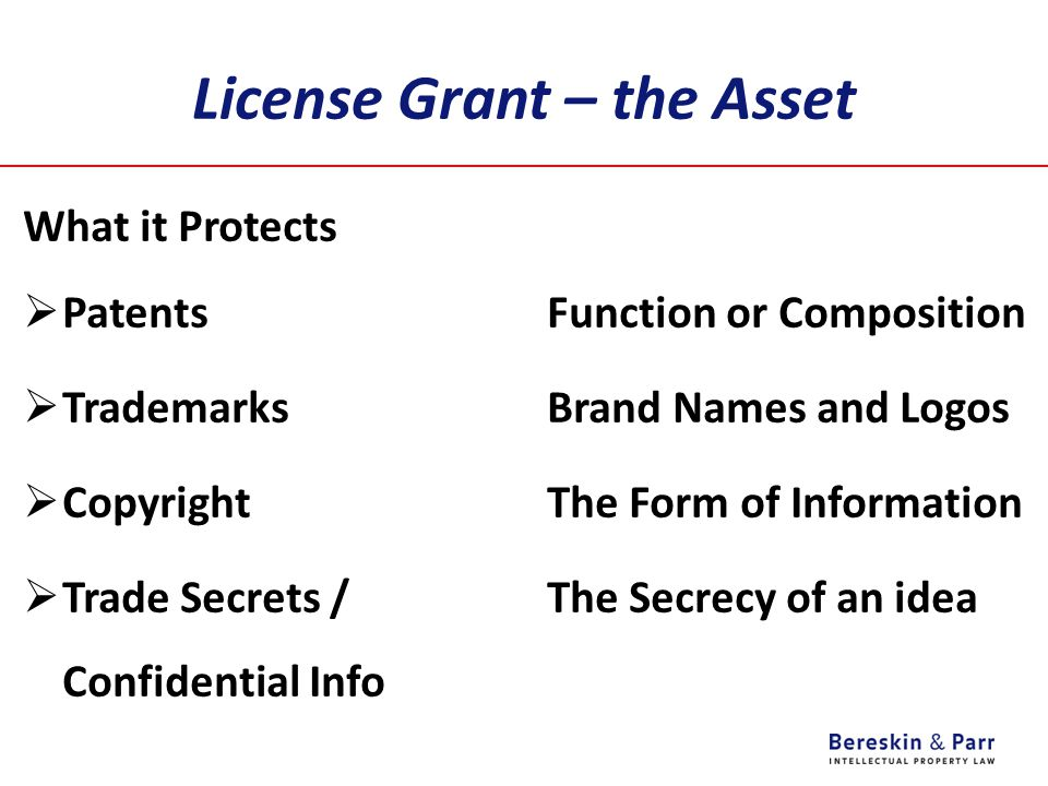 License Grant – the Asset