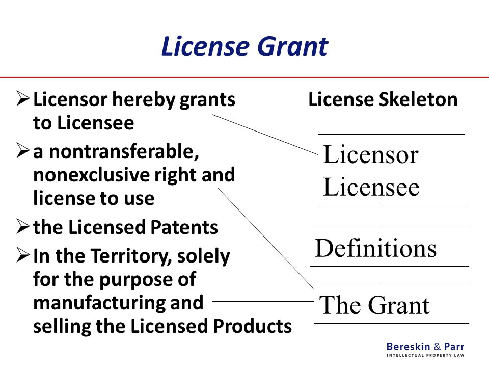 License Grant Licensor Licensee Definitions The Grant