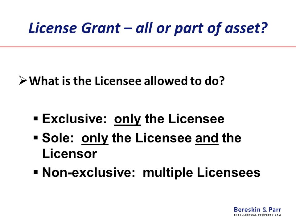 License Grant – all or part of asset