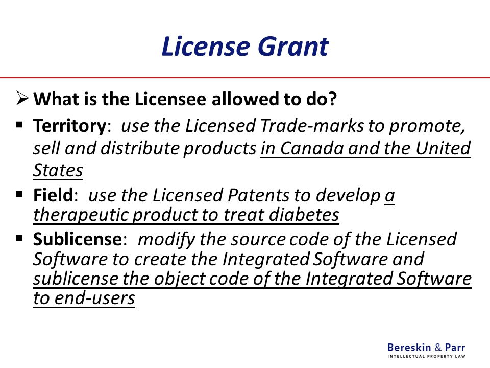 License Grant What is the Licensee allowed to do