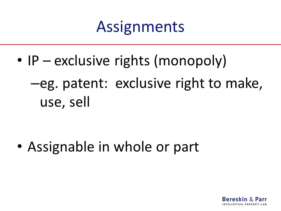 Assignments IP – exclusive rights (monopoly)