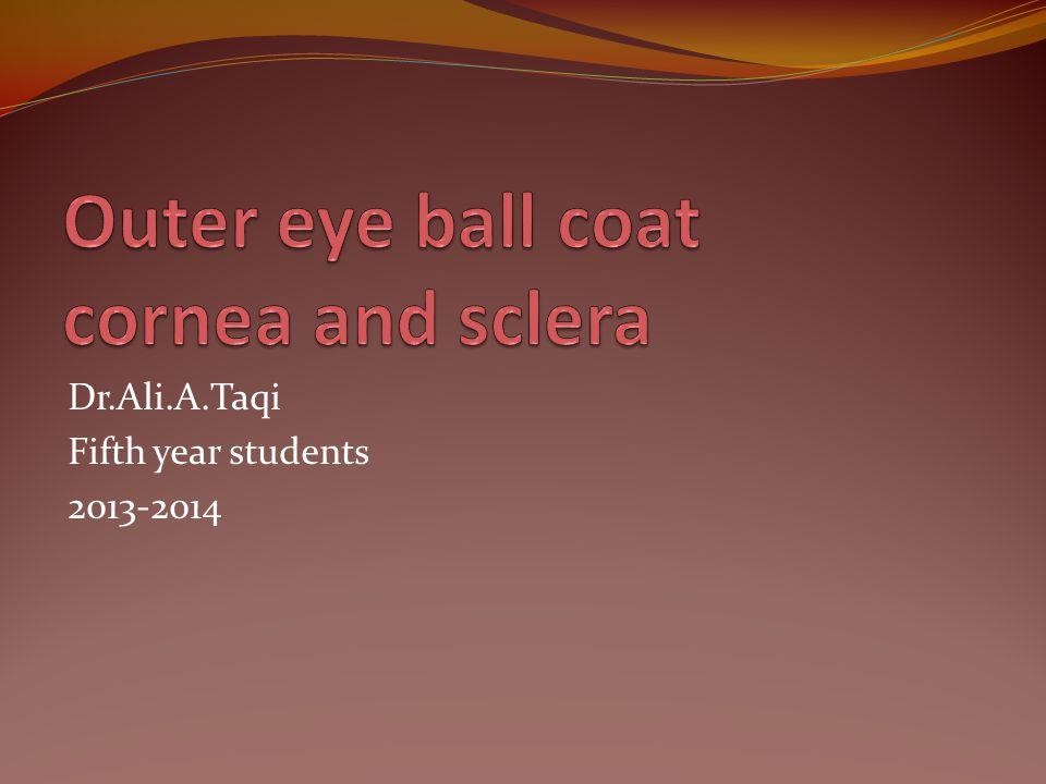 Outer eye ball coat cornea and sclera