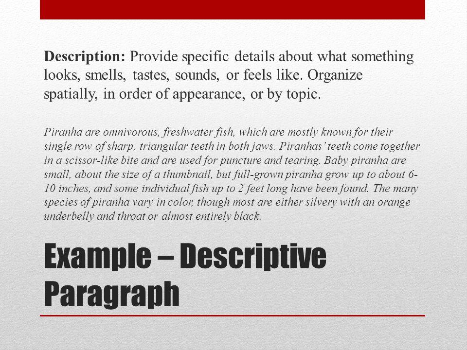Example – Descriptive Paragraph