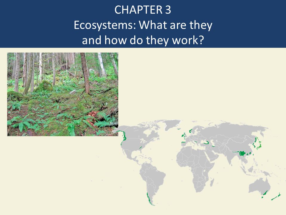 CHAPTER 3 Ecosystems: What are they