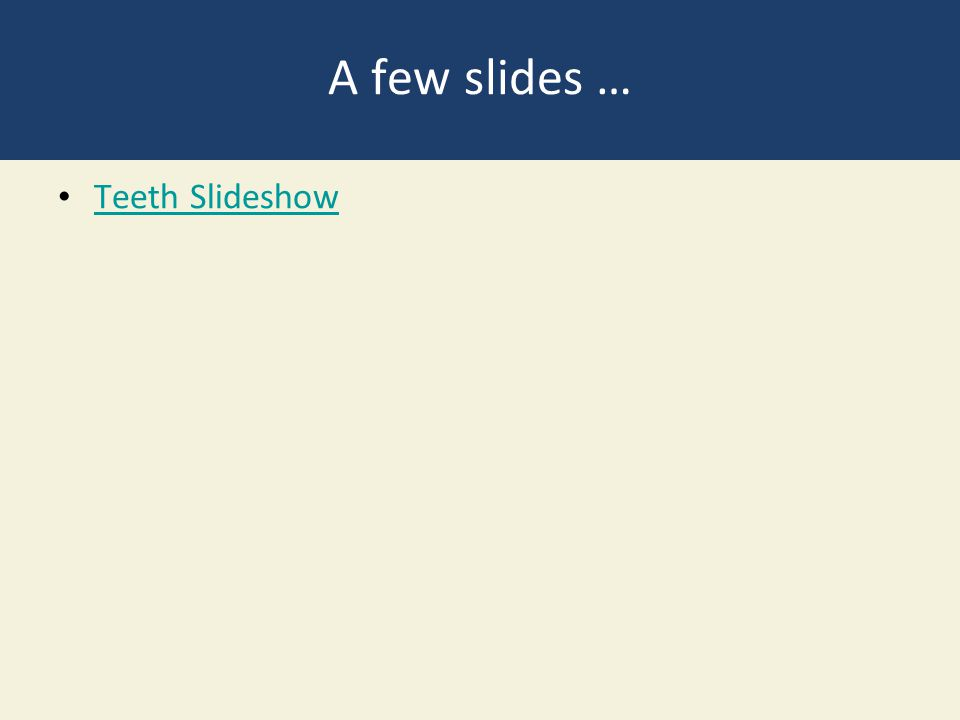 A few slides … Teeth Slideshow