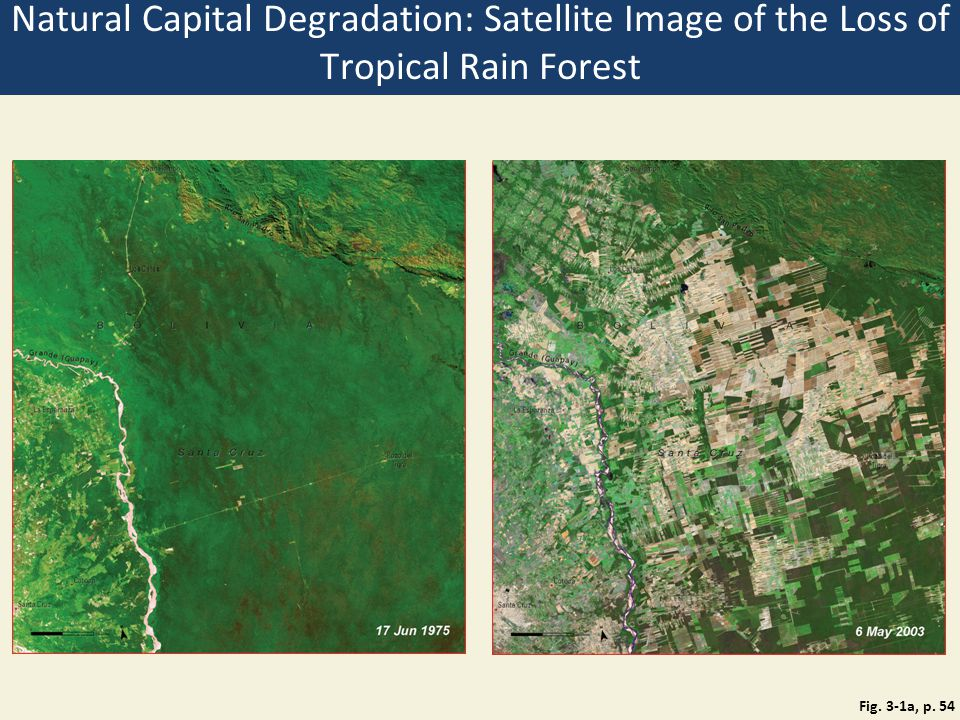 Natural Capital Degradation: Satellite Image of the Loss of Tropical Rain Forest