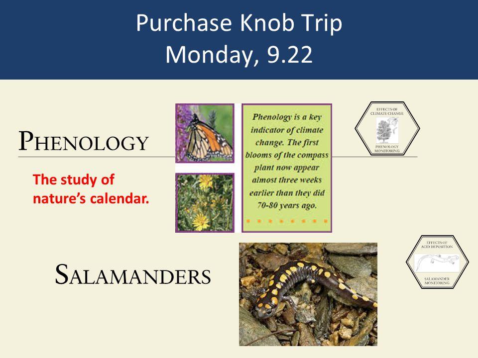 Purchase Knob Trip Monday, 9.22