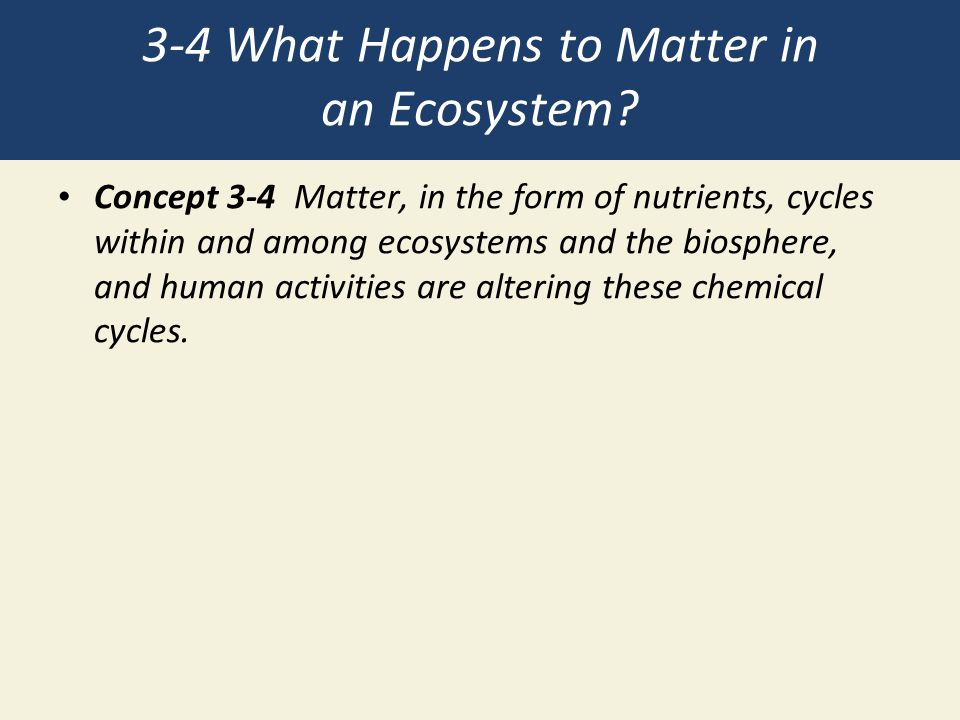 3-4 What Happens to Matter in an Ecosystem